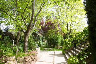 Our estate has a park for your wedding in Provence
